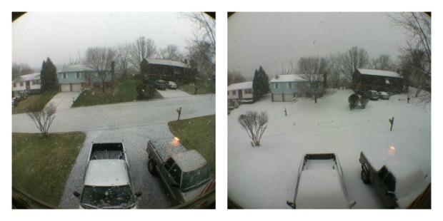snowpicture