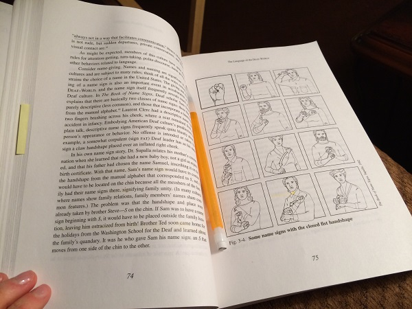 I'm currently learning about the grammar of American Sign Language!