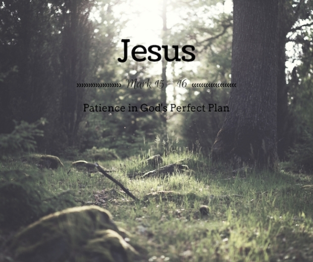 30-day-patience-bible-study-jesus