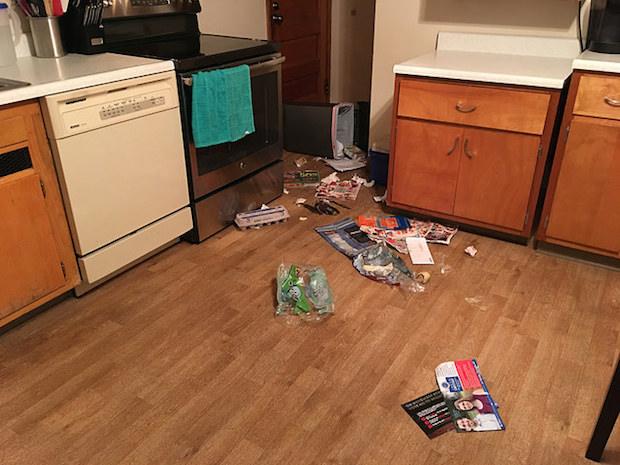 lola-garbage-picking