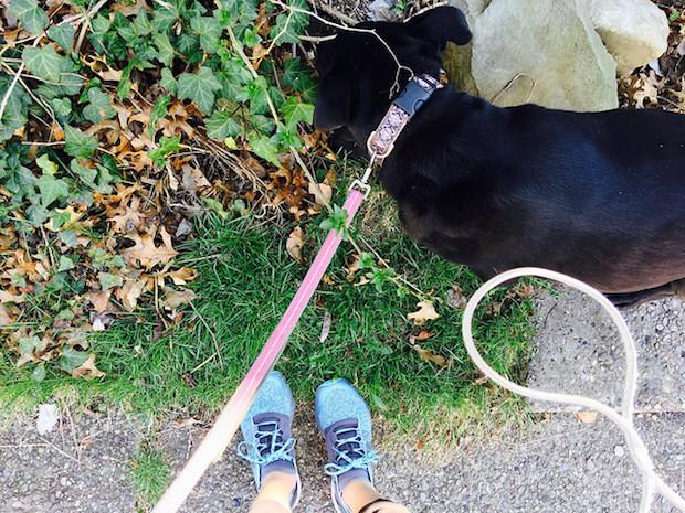 Walking lola