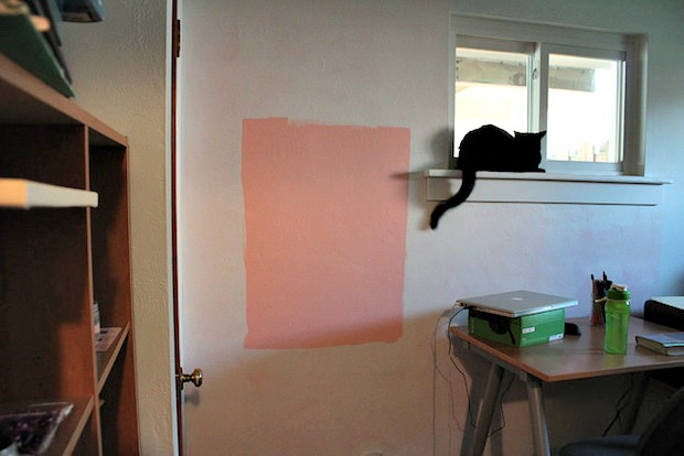 peach whisper paint sample by Valspar