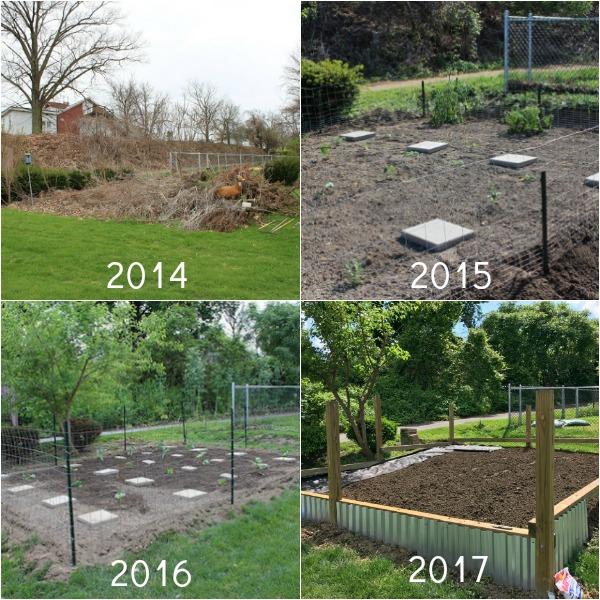 Vegetable Garden Progression