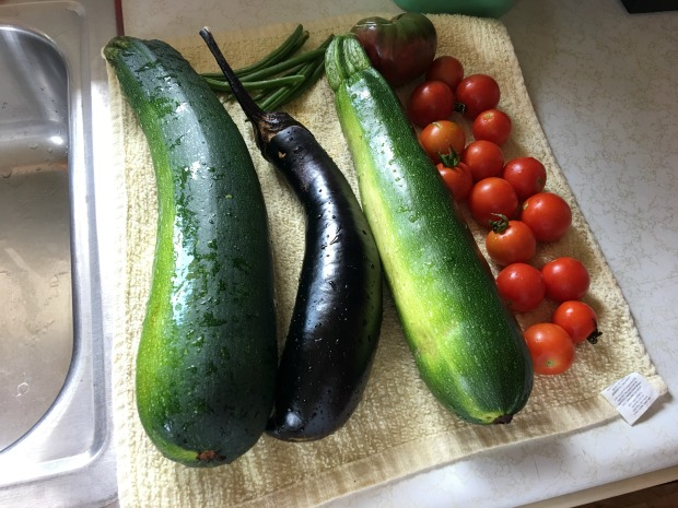 Zucchini, Japanese eggplant, cherry tomatoes, purple tomato, and green beans from vegetable garden
