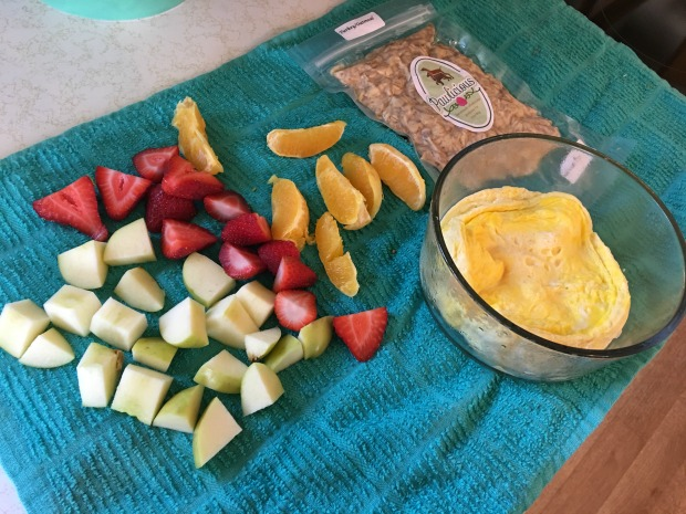 Homemade dog food with fruits and eggs