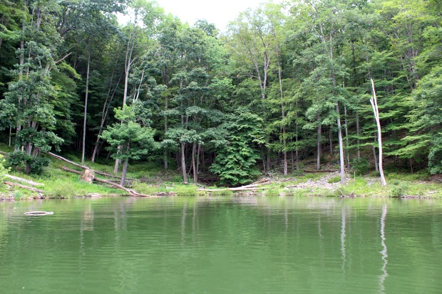 Fishing at Kinzua