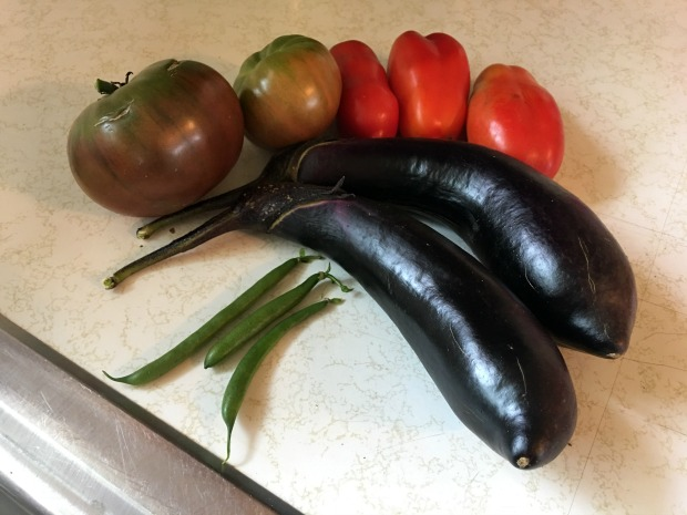 Japanese eggplant, purple tomatoes, San Marzano tomatoes, and green beans