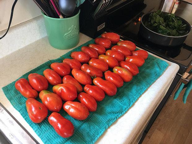 San Marzano tomatoes and swiss chard