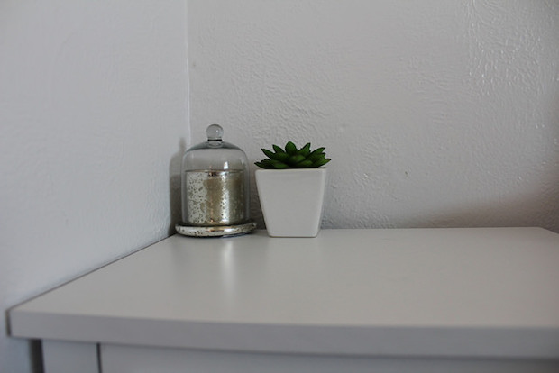 Succulent and candle with cloche