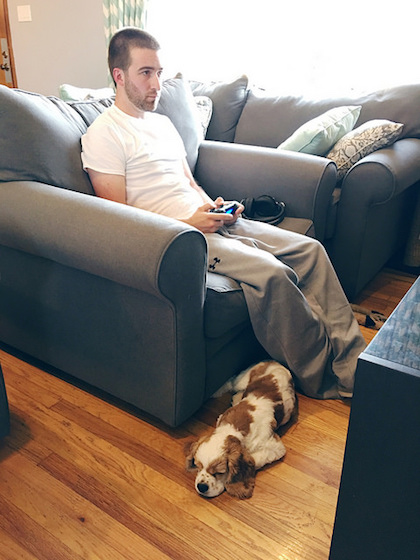 Cocker Spaniel and guy playing video games