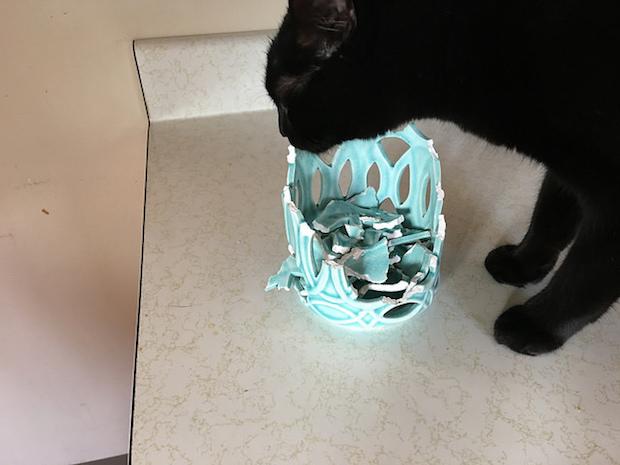 Black cat with broken vase
