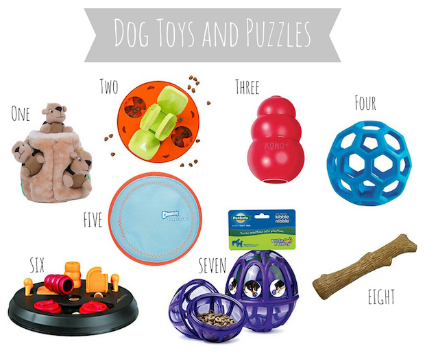 The best dog toys and puzzles