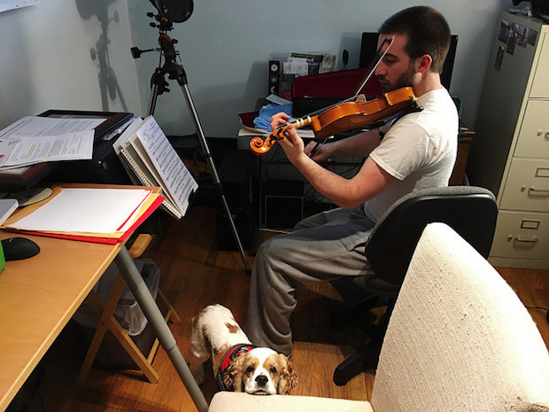 Guy playing violin with dog