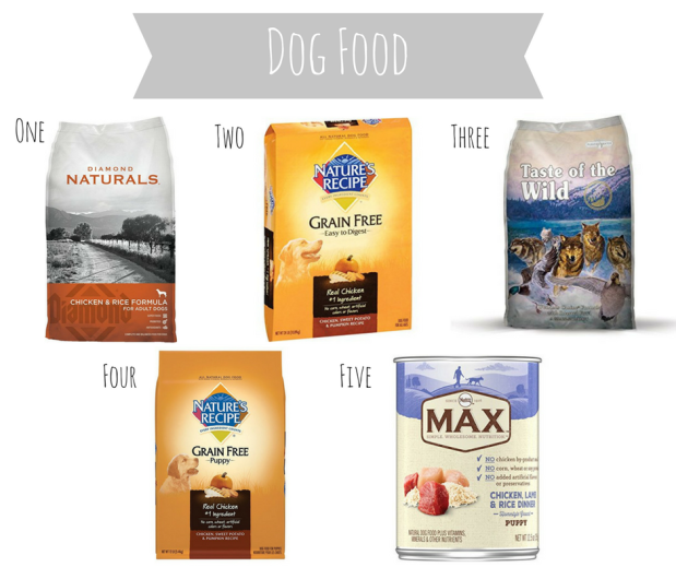 The Best Dog and Puppy Food