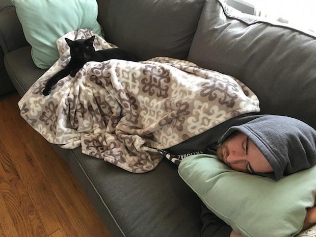 Black cat sleeping on guy