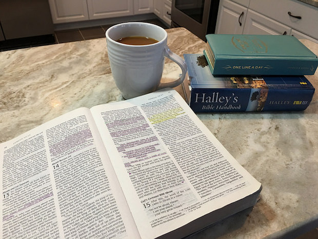 Coffee and Bible and Halley's Bible Handbook One Line a Day Book