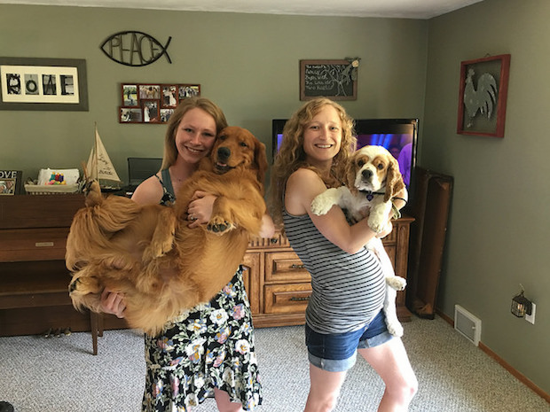 Girls holding golden retriever and cocker spaniel