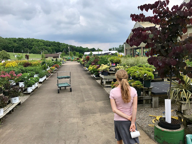 Girl looking at garden and farm store Trax Farms in Pittsburgh, PA
