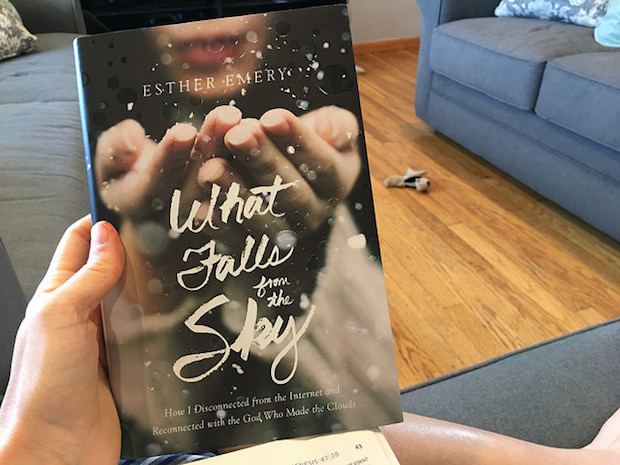 What Falls From the Sky by Ester Emery book