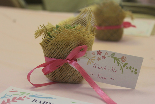 Watch me grow succulent favor with burlap for baby girl baby shower