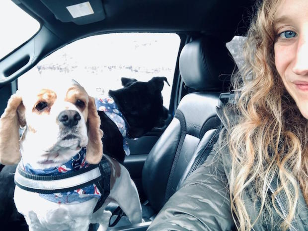 Girl in Ford Raptor truck with cocker spaniel and black lab