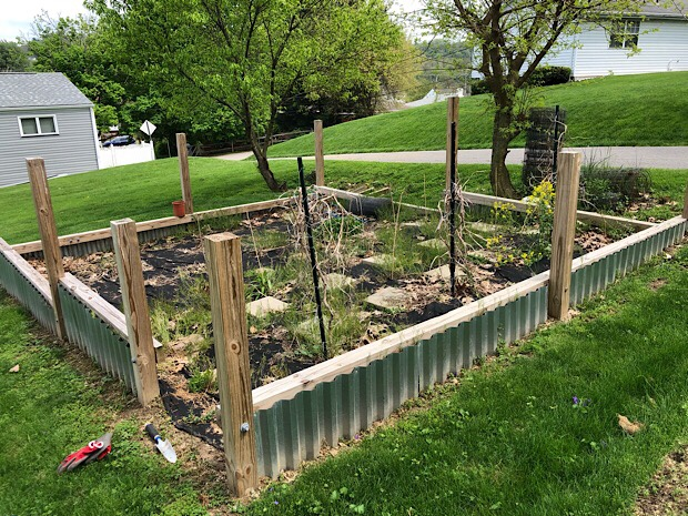 Vegetable garden plot with wood and steel fencing