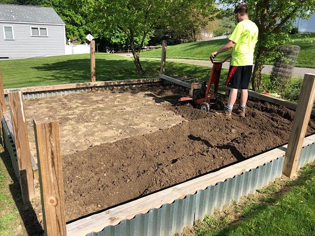 Guy using rototiller to till vegetable garden plot