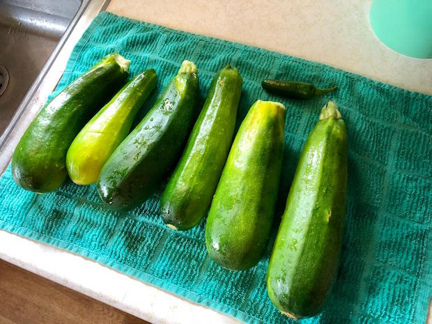 Zucchini and jalapeno from vegetable garden