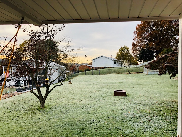 Yard in November with frost