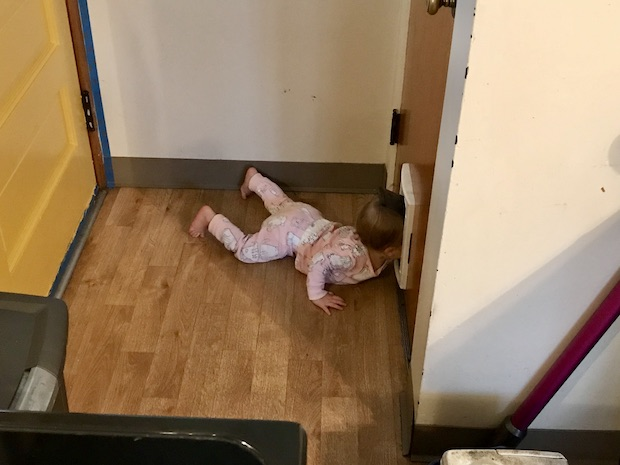 Toddler in cat door