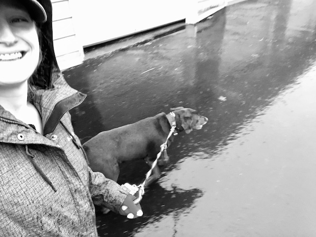 Girl walking chocolate lab in rain