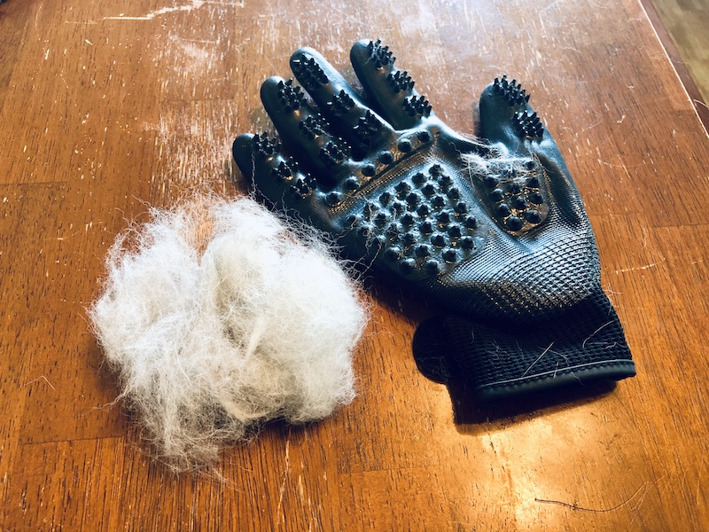Dog shedding gloves product