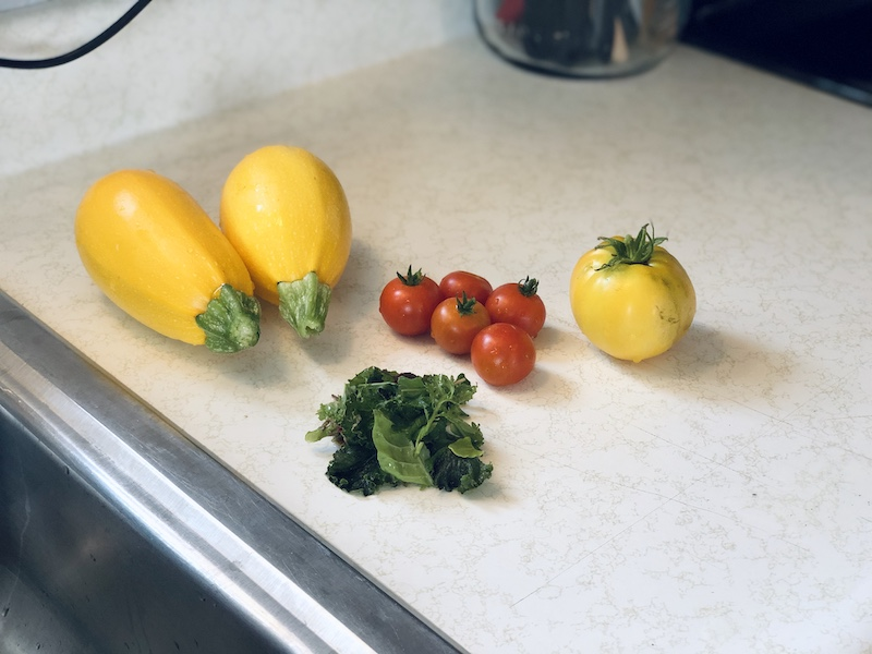 Vegetables from vegetable garden  squash, yellow tomato, cherry tomatoes, and arugula