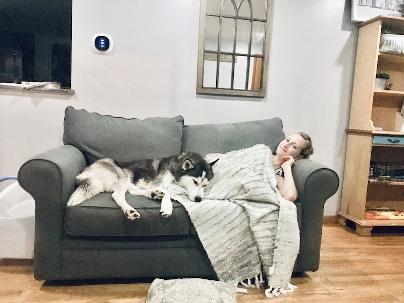 Girl and husky snuggling on couch