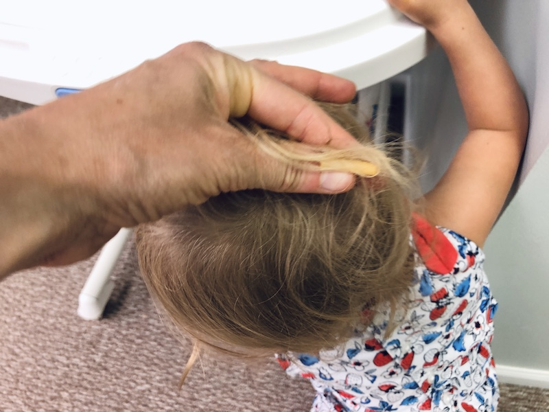 Noodle in toddler's hair