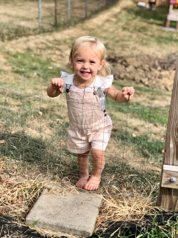 Toddler standing at garden fence in overalls