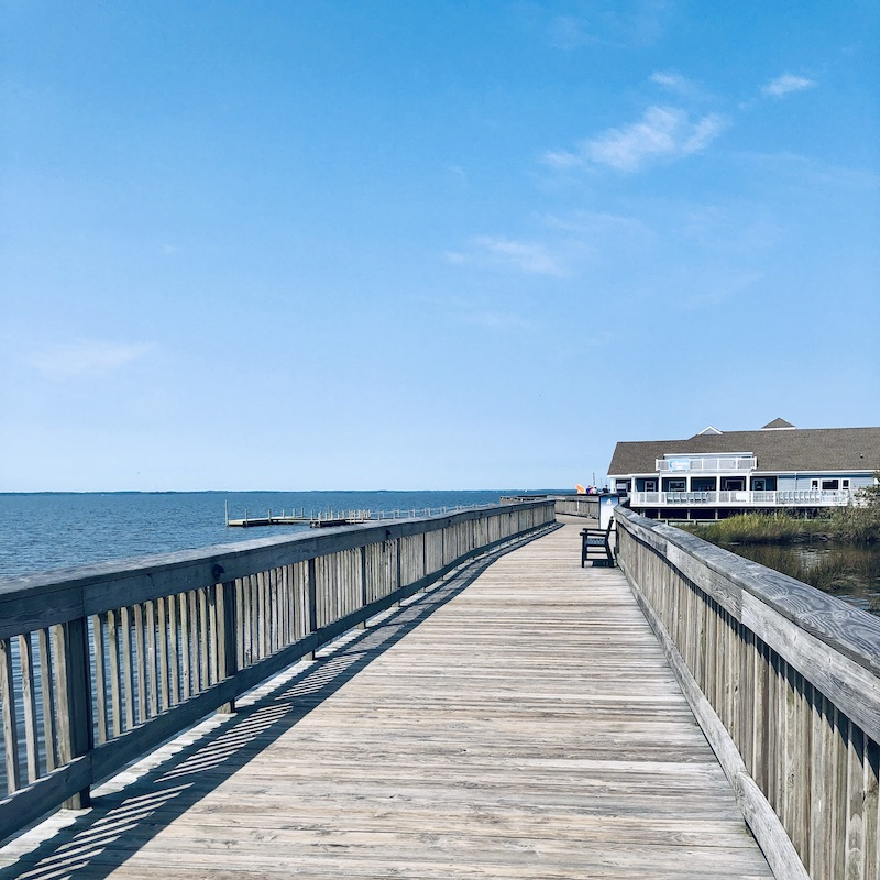 Duck boardwalk in Outer Banks