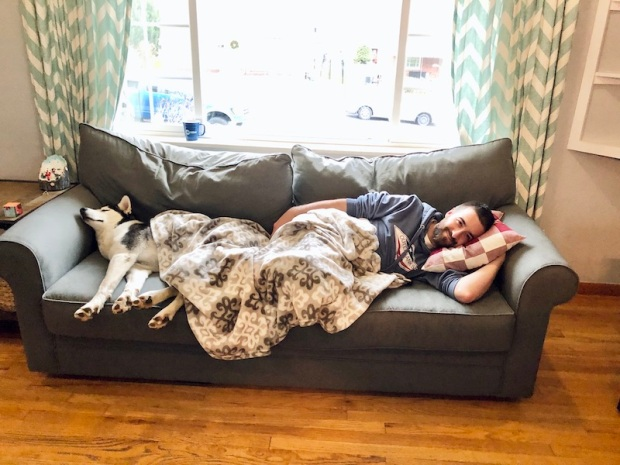 Husky sleeping on couch with blanket