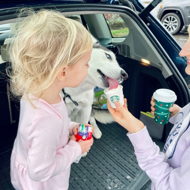 Husky having Starbucks