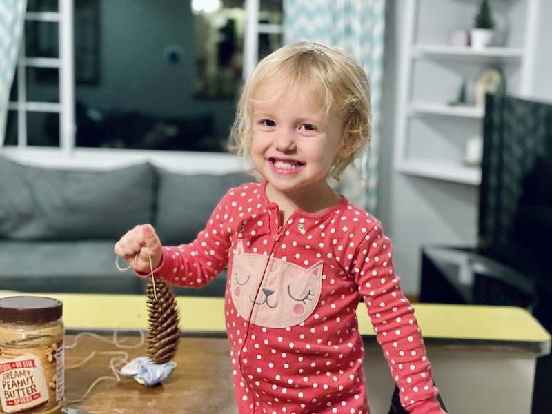 Toddler pine cone craft