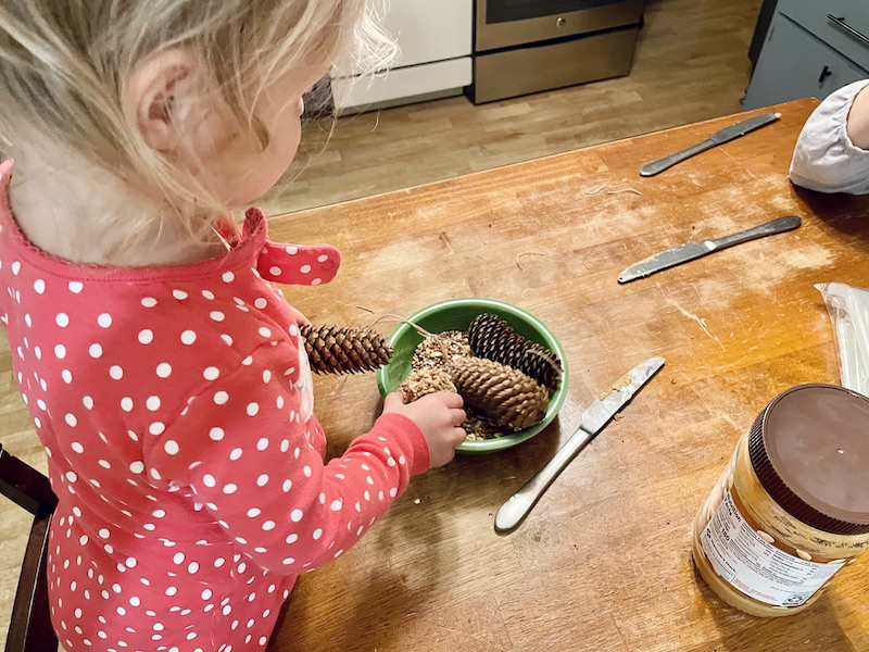 Toddler pinecone craft