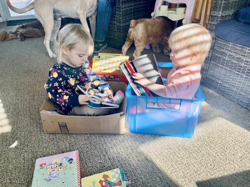 Toddlers sitting in boxes reading books