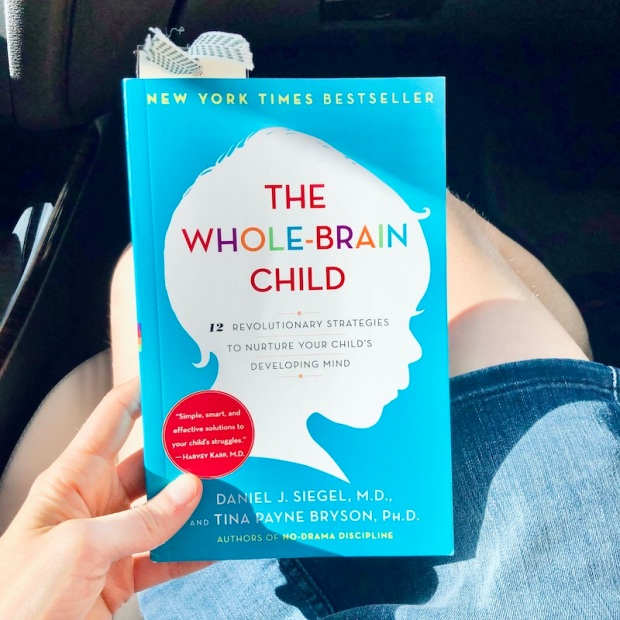 The Whole Brain Child book