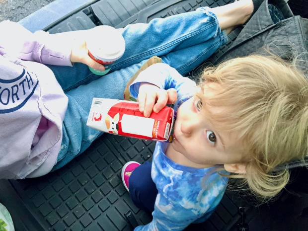 Toddler sitting in back of car with milk