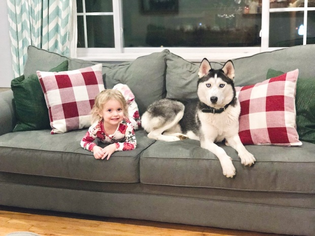 Husky and toddler laying on couch together