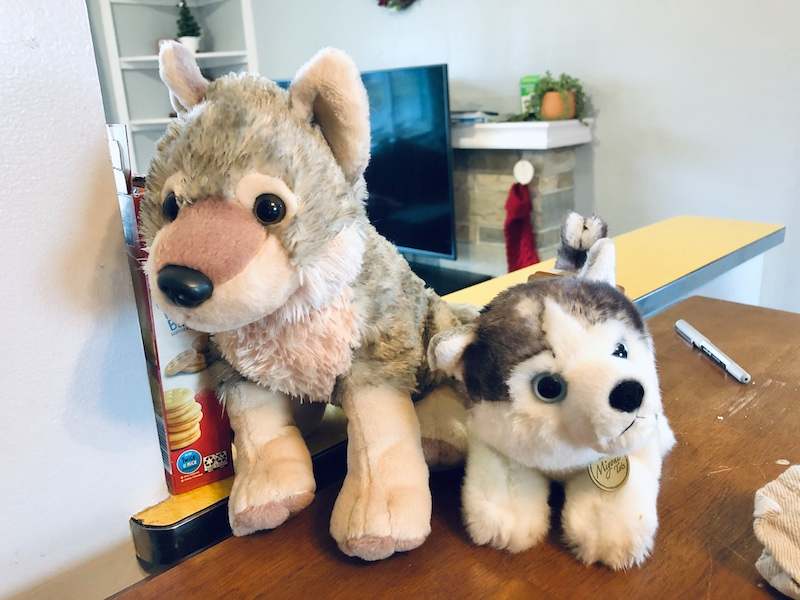 Stuffed wolf and stuffed husky