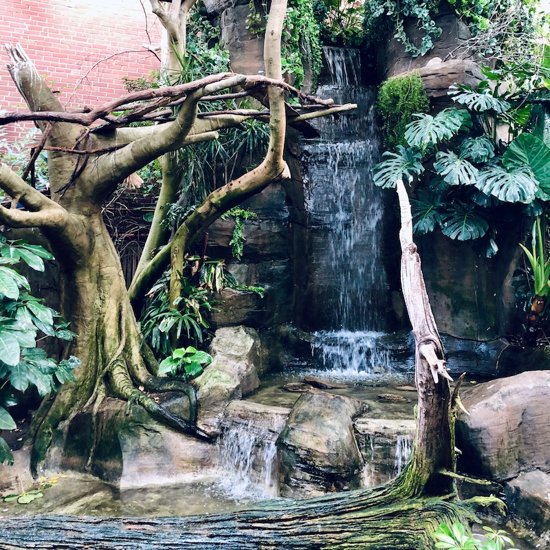 National Aviary in Pittsburgh, PA