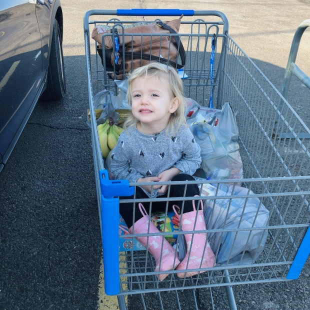 Toddler in shopping cart at Walmart