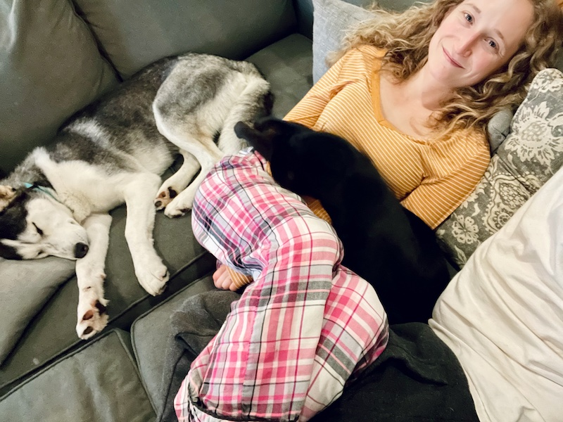Girl with cat on her lap and husky