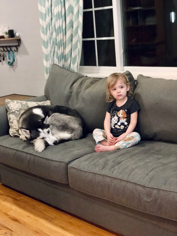 Husky laying on couch with toddler